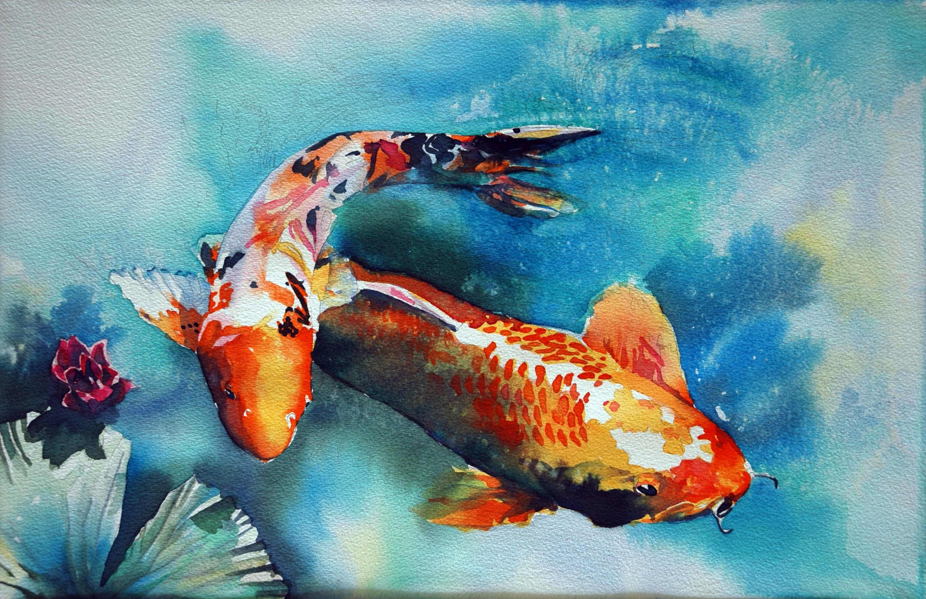 2984x1930 Koi Fish Watercolor Painting Speed Painting
