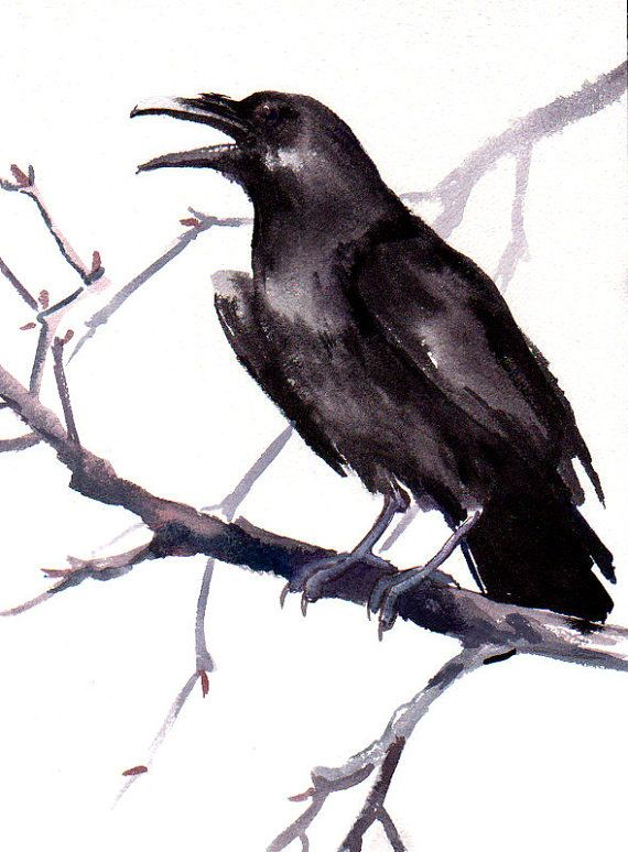 570x774 Crow, Original Watercolor Painting, 12 X 9 In, Black And White