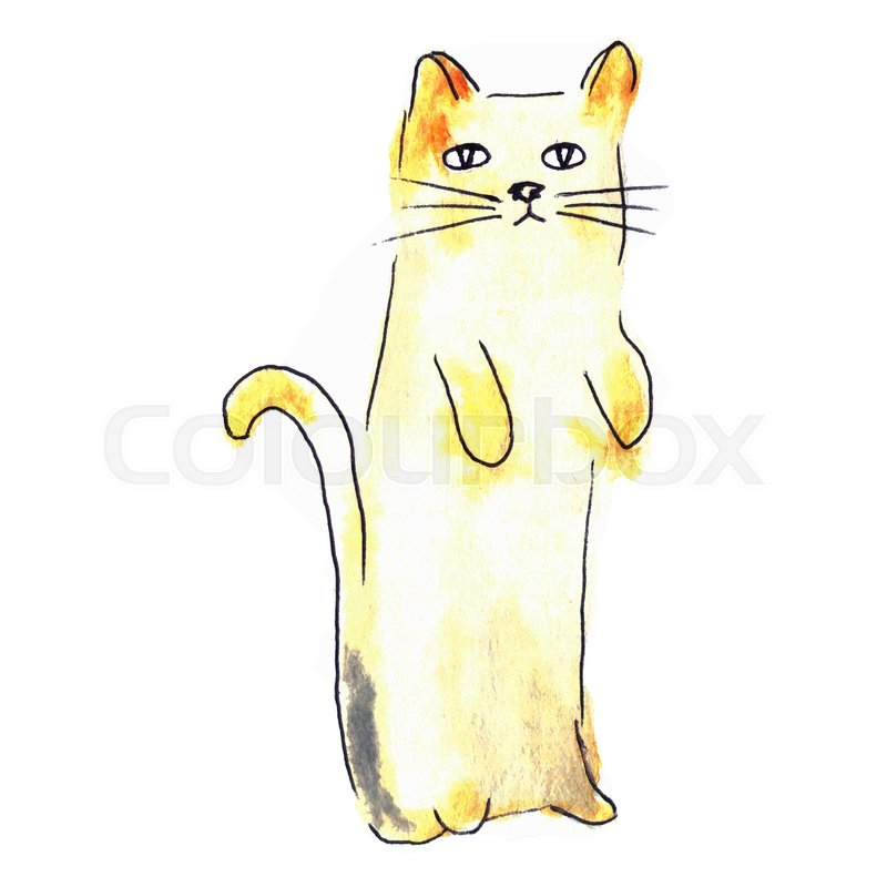800x800 Cute Cat. Watercolor Kids Illustration With Domestic Animal
