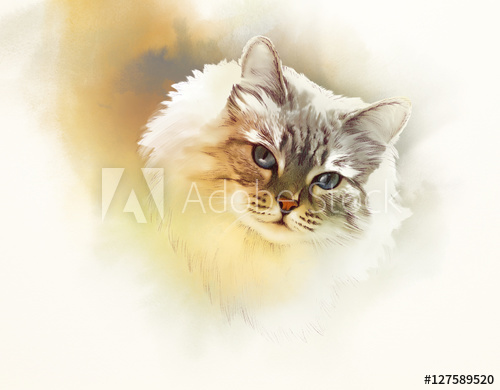 500x390 Cute Cat. Watercolor Portrait Of A Cat. Drawing Of A Cat With Blue