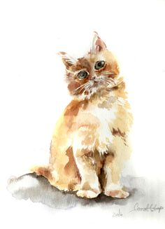 236x327 Pin By Becky Banner On Cat Drawings