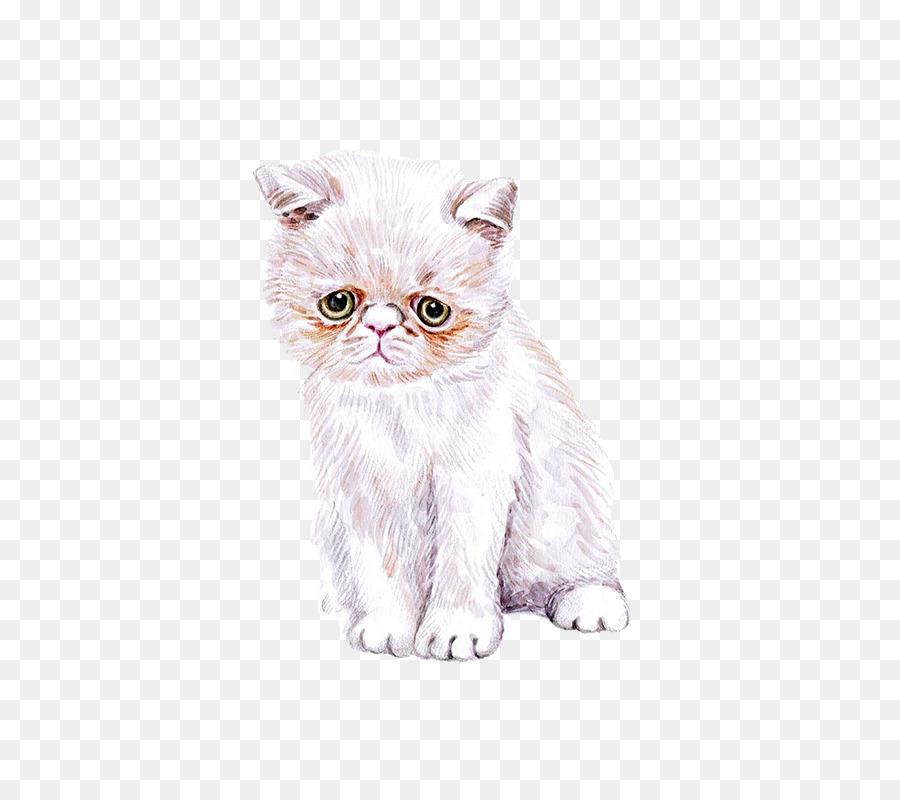 900x800 Cat Kitten Watercolor Painting Cuteness
