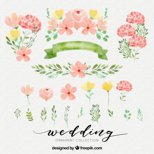 626x626 Cute Watercolor Elements Vector Free Download