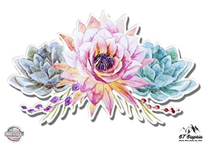 425x298 Succulents Flowers Cute Watercolor