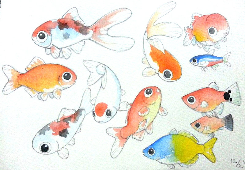 800x555 Watercolor Cute Fishies By Mondoart