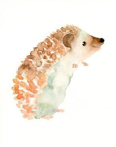 236x299 Hedgehog Watercolour So Cute Omg Ahhhh