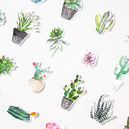 425x425 Super Cute Watercolor Cactus And Succulent Plants