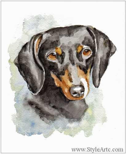 410x502 Dachshund Watercolor Pet Portraits
