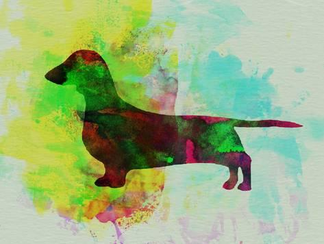 473x356 Dachshund Watercolor Posters By Naxart