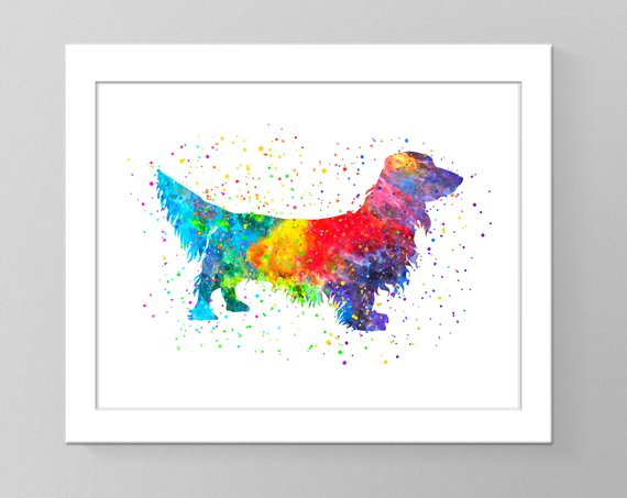 570x453 Dachshund Watercolor Wall Art Printable Home Decor Dog Nursery Etsy