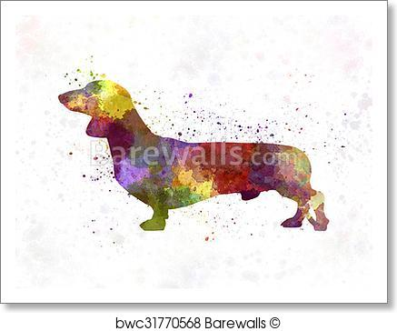 437x364 Art Print Of Dachshund In Watercolor Barewalls Posters Amp Prints