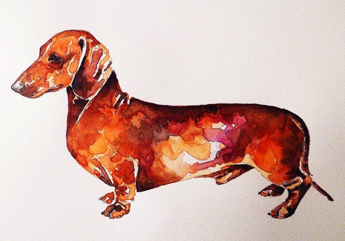 1100x769 Watercolors Of Dachshunds