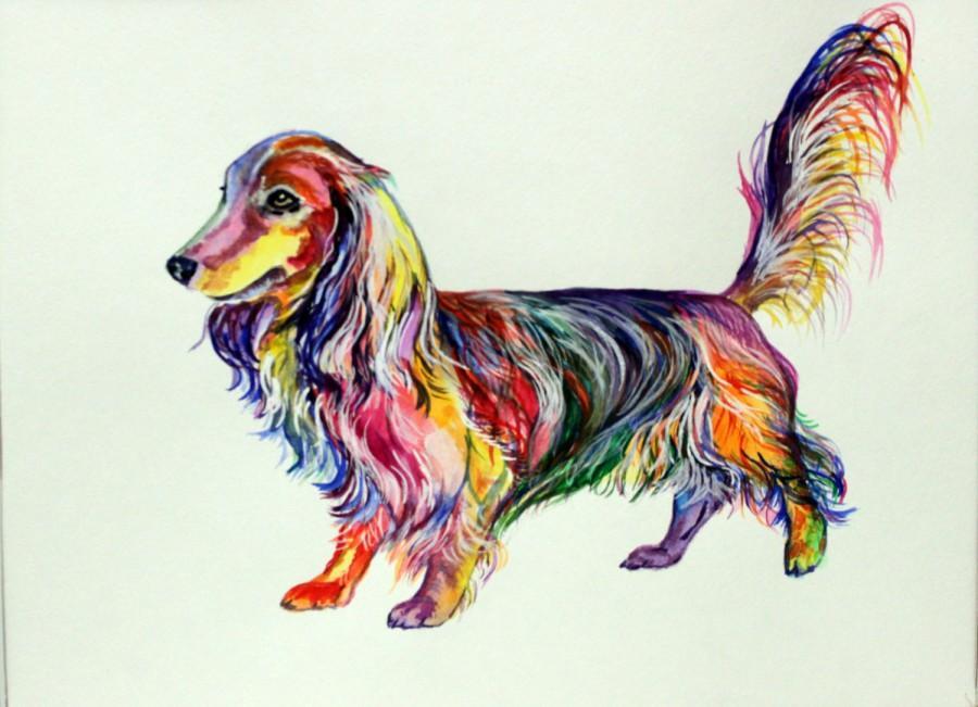 900x651 Dachshund Longhair Art Print On Canvas Dog Watercolor Painting