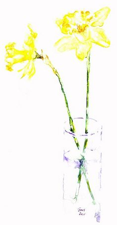 236x452 46 Best Watercolor Flowers Daffodils Images In 2018