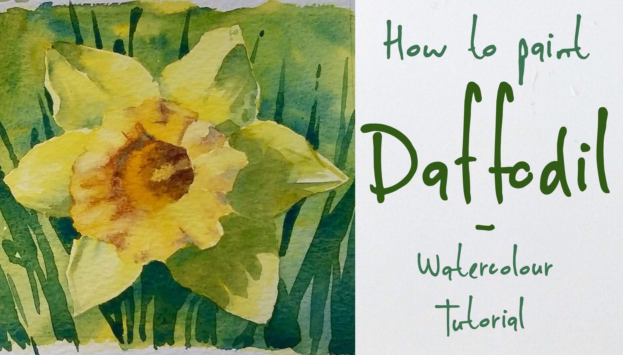 2540x1448 How To Paint A Daffodil Flower