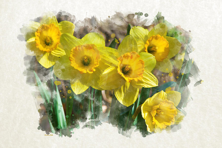 900x600 Spring Daffodils Watercolor Art Mixed Media By Christina Rollo