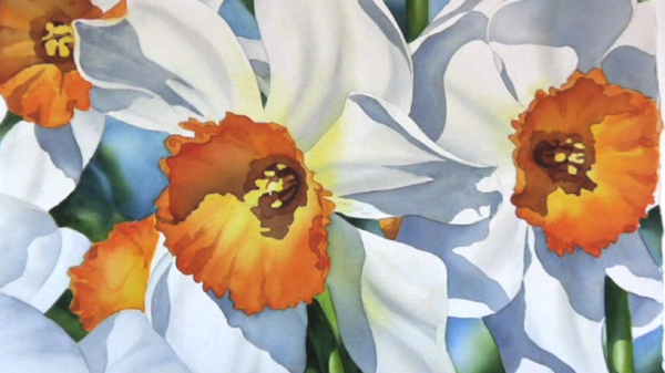 600x337 Watercolor Painting Demo How To Paint Daffodil