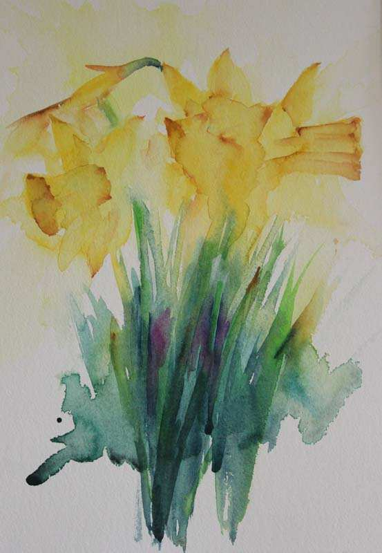 553x800 Daffodil Painting Lovely Watercolours With Life Practise Practise