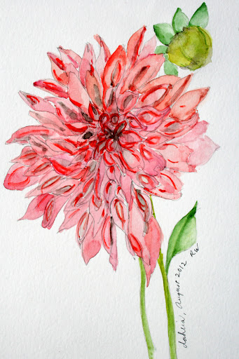 341x512 Inspired By Dahlias Photos, Watercolors, Pen Amp Ink Drawings