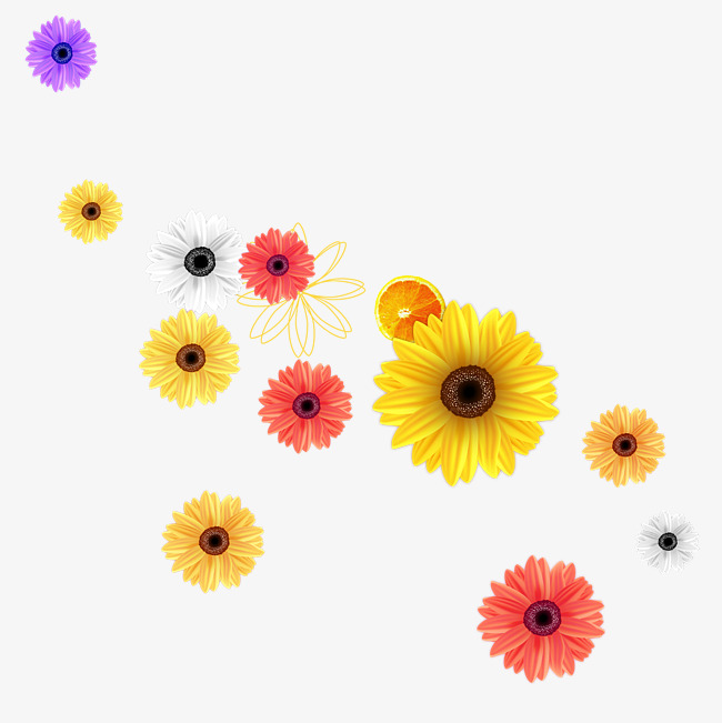 650x651 Watercolor Daisy Flower, Watercolor Flower, Plant, Daisy Png And