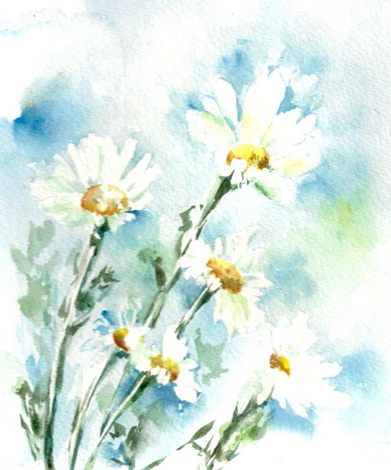 570x685 Watercolor Painting Art Print Daisy Flowers By Canotstopprints