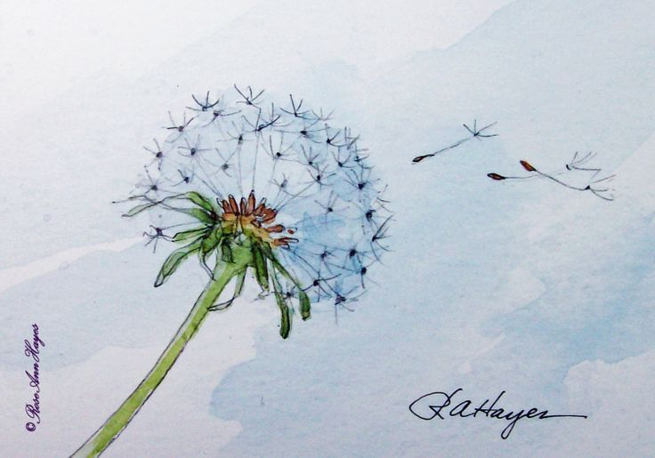 736x515 Dandelion In The Wind Print Of Watercolor Painting Aceo Art