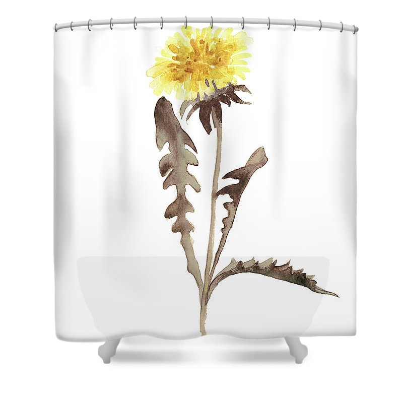 800x800 Asters Flowers, Abstract Flower Yellow Wall Decor, Dandelion