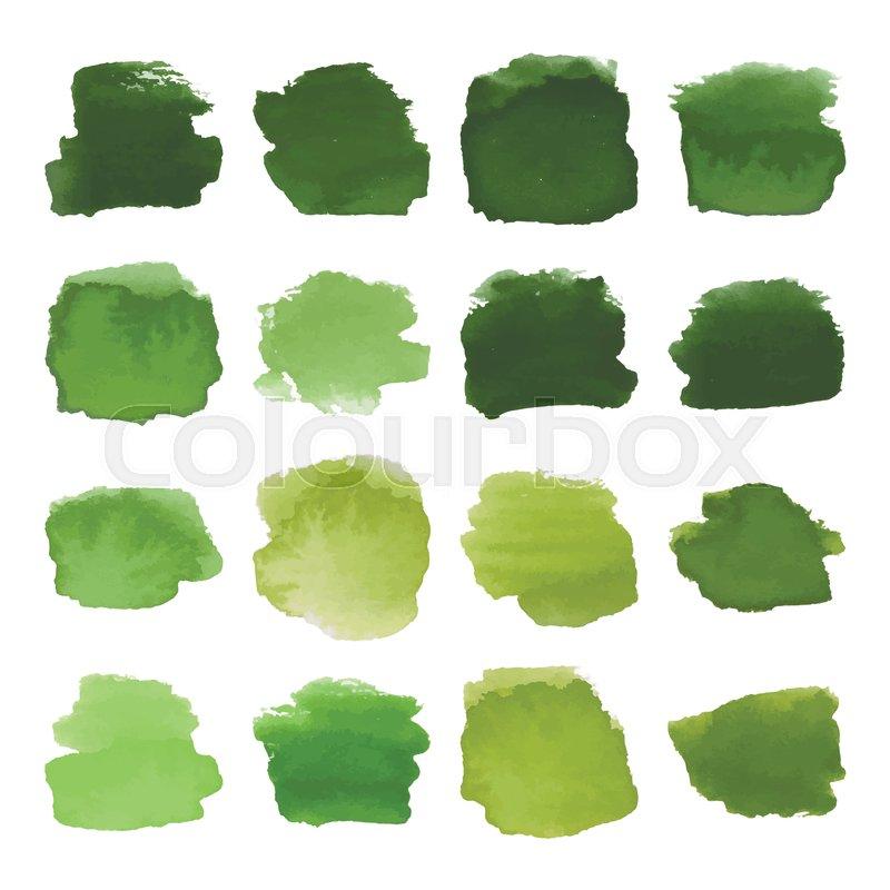 800x800 Vector Set Of Dark Green Watercolor Blots Hand Painted Texture