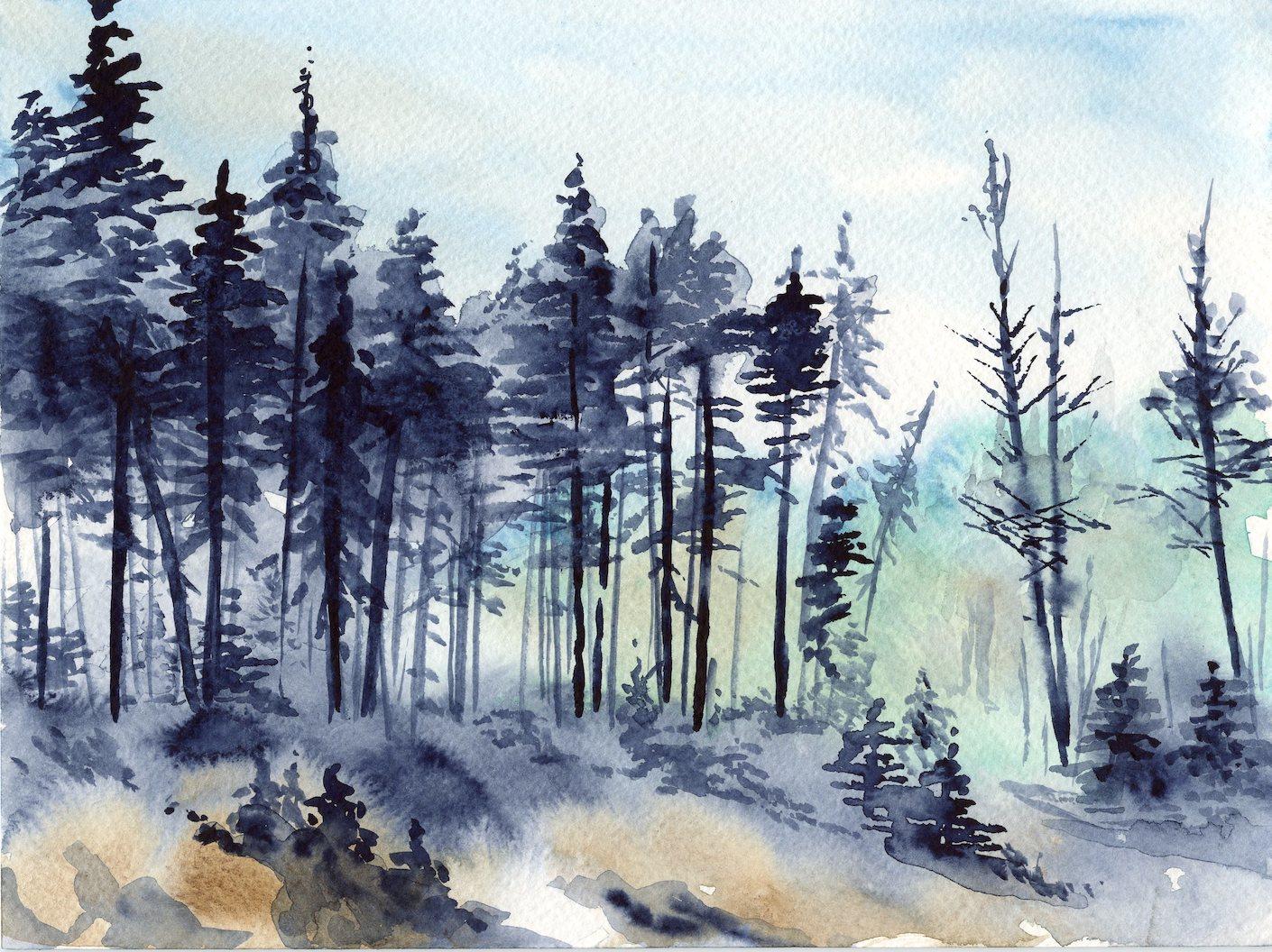 1410x1056 Watercolour Basics Karen Gillmore Art