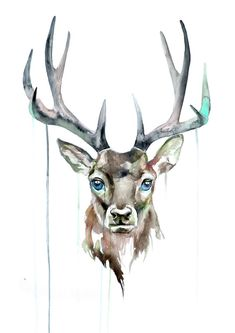 235x333 32 Best Watercolor Deer Images In 2018 Watercolor