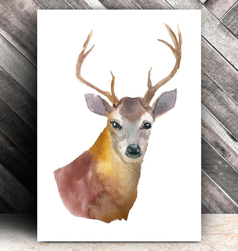800x842 Deer Head Ii