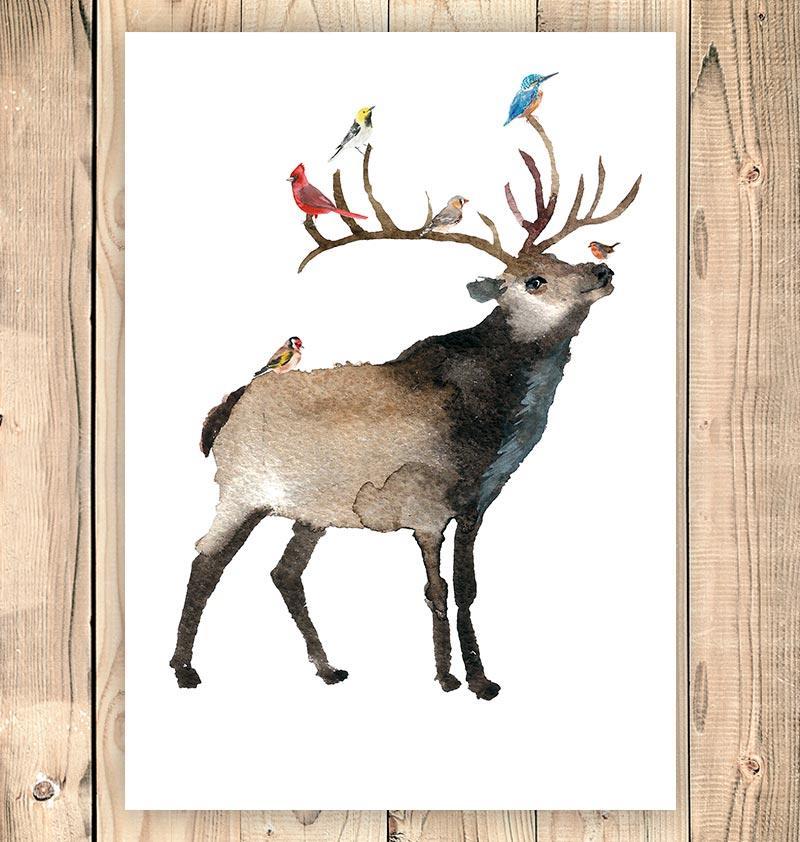800x842 Deer Ii