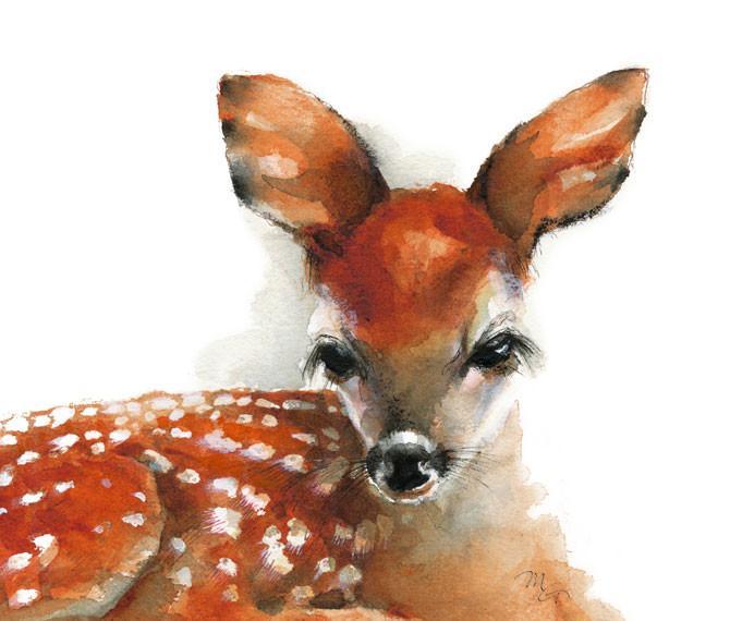 670x570 Deer Watercolor Archival Print Mira Guerquin Watercolors