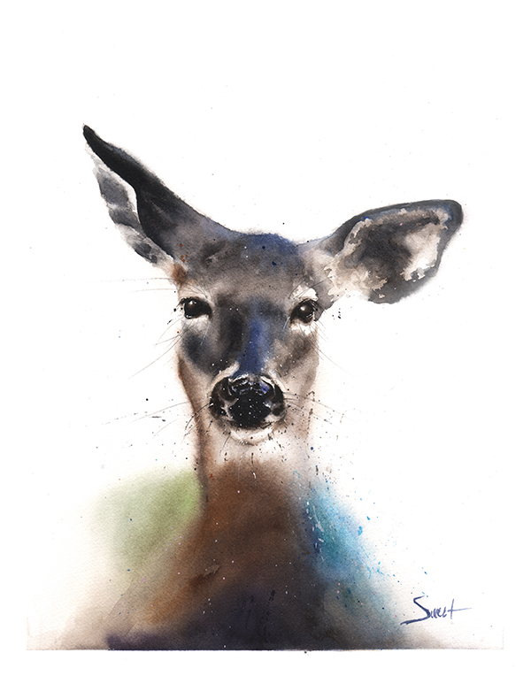 600x764 Deer Watercolor Print Watercolor Animal Paintings