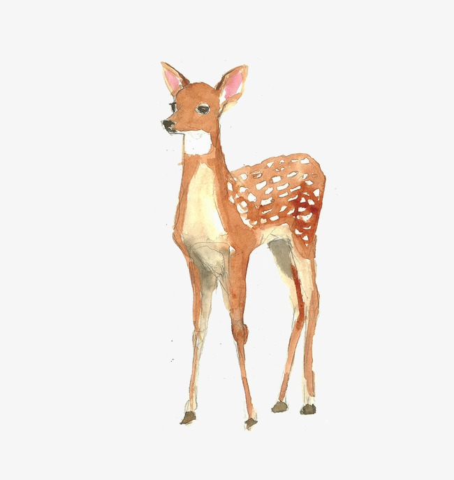 650x686 Watercolor Deer, Watercolor Clipart, Deer Clipart, Watercolor Png