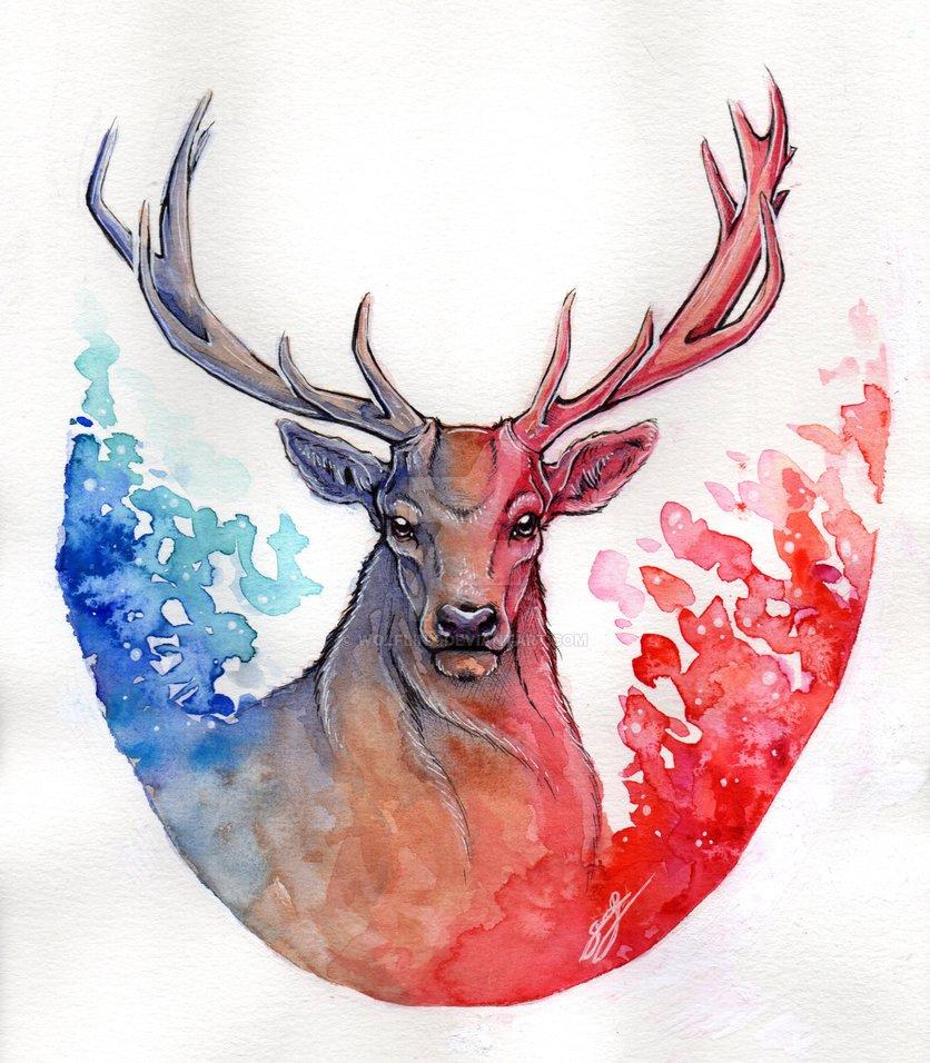 836x956 Watercolor Deer By Wolflinx