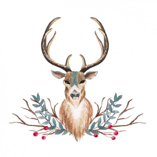 626x626 Watercolor Deer Design Vector Free Download