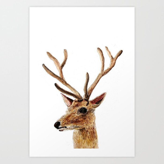700x700 Deer Watercolor Painting Art Print By Colorandcolor Society6
