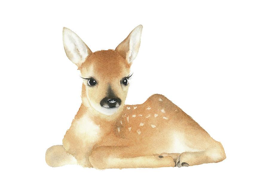 900x636 Baby Deer Watercolor Painting By Zapista