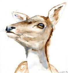 Deer Watercolor Painting