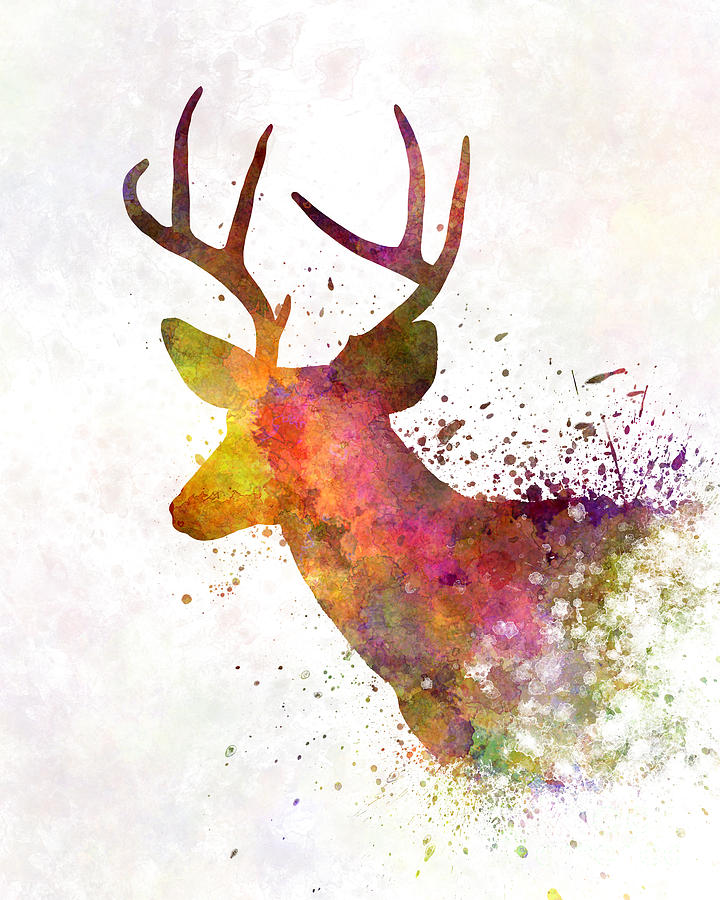 720x900 Male Deer 02 In Watercolor Painting By Pablo Romero