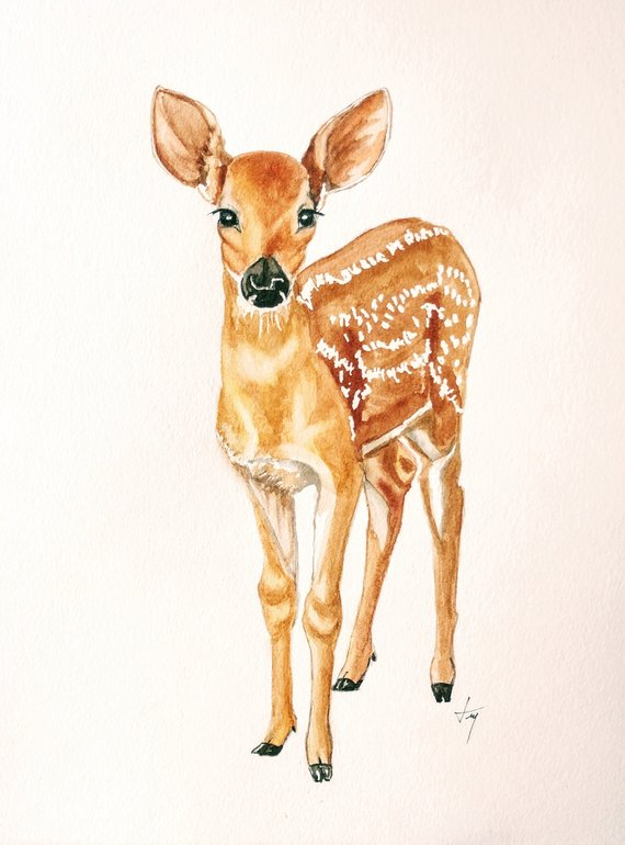 570x770 Original Deer Watercolor Painting Baby Deer Watercolor Etsy