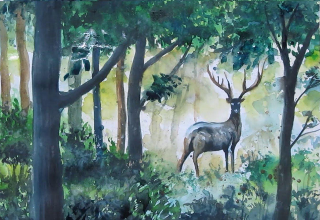 1342x922 Deer In Watercolor Speed Painting