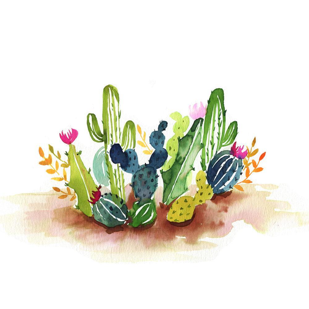 1000x1000 Desert Cactus Watercolor Paint Kit