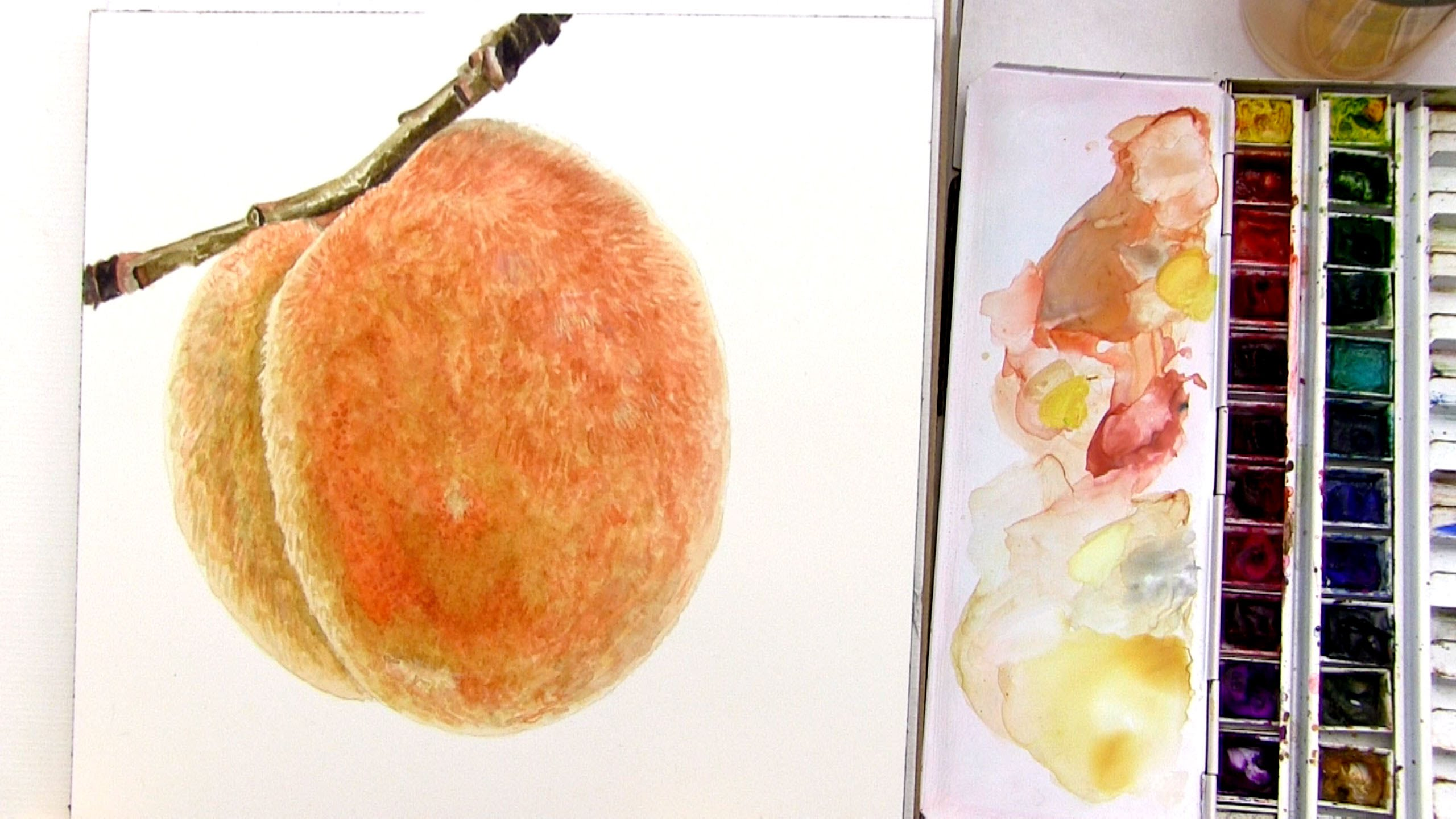 2560x1440 How To Paint A Detailed Realistic Branch In Watercolor