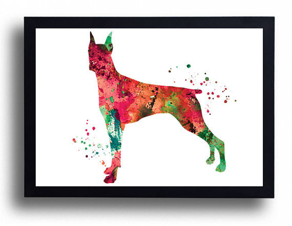 570x441 Doberman Pinscher Watercolor Art Print Dog Art Dog