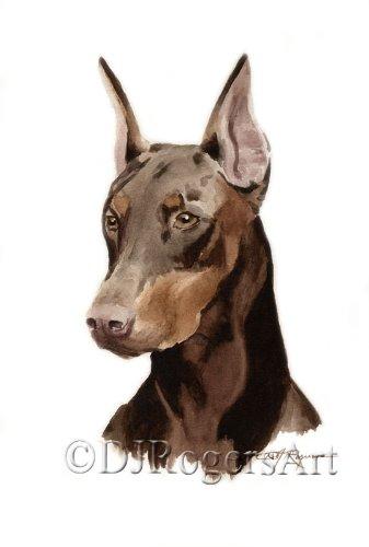 337x500 Doberman Pinscher Watercolor Art Print Signed By