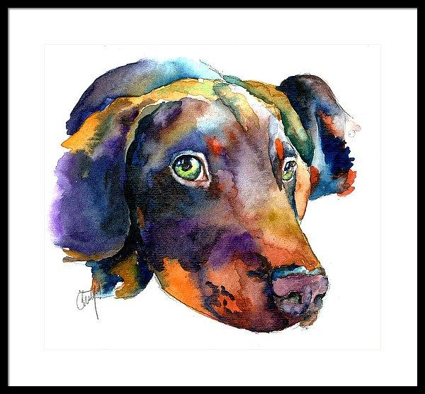 600x555 Doberman Watercolor Framed Print By Christy Freeman