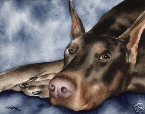 300x236 Red Doberman Watercolor Dog 8 X 10 Art Print Signed By Artist Djr