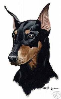 247x400 Doberman Pinscher Art Print Dog Watercolor 8 X 10 Signed By Artist